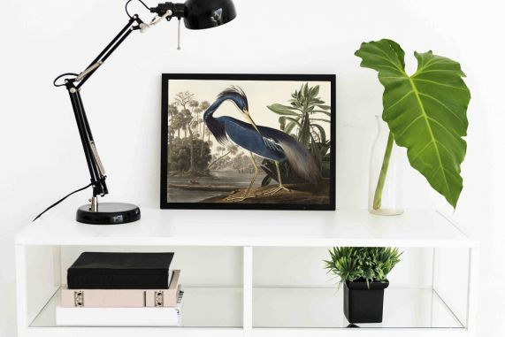 Louisiana Heron Interieur posters   A3