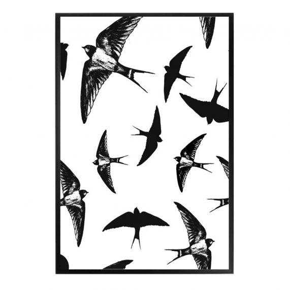 BIRDS kaart   a5