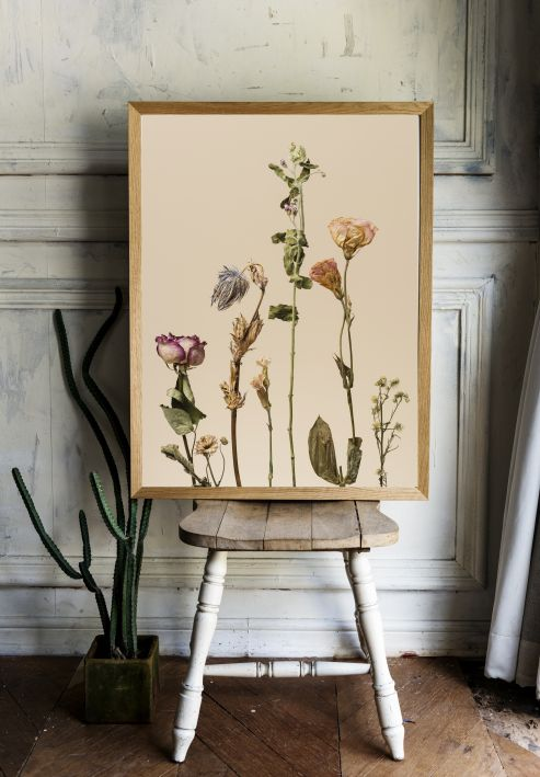 Dried Flowers Interieur posters A3