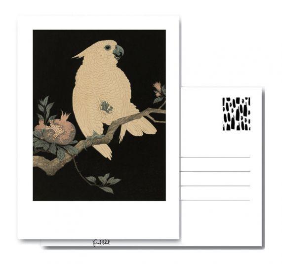 PAND LABEL KAART A6 | Vintage Cockatoo