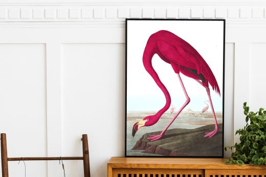 interieur poster flamingo