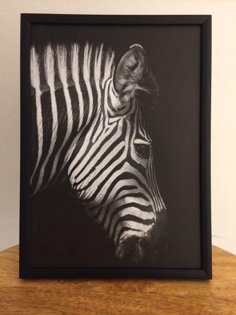 Zebra black foto kaart mat | a5