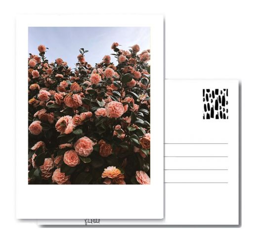 PAND LABEL KAART A6 | Camellias FLOWER