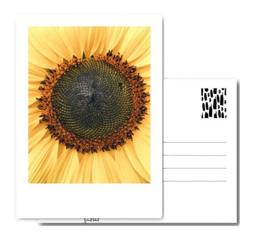 PAND LABEL KAART A6 | SUNFLOWER