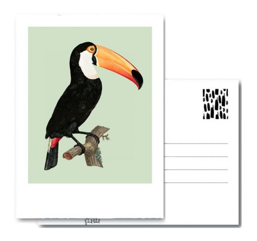 PAND LABEL KAART A6 | Vintage toucan
